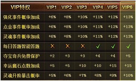 图1:《VIP部分功能》