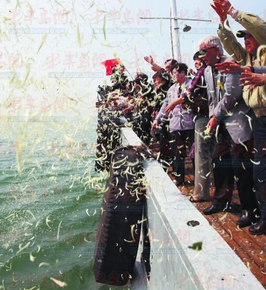 浙江舟山,海峡两岸同胞在嵊泗白节山海域举行太平轮海难海祭仪式